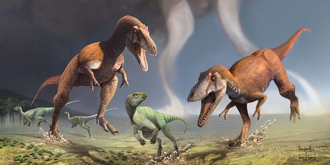 Cette nouvelle espèce, datant d'environ 90millions d'années, présente des ressemblances avec le T. rex, notamment ses deux bras minuscules, mais appartient à une lignée différente.