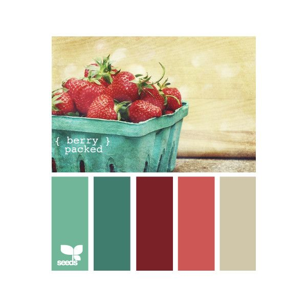 Design Seeds ❤ liked on Polyvore featuring colors, design seeds, palettes, backgrounds and color palettes