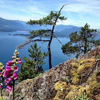 Mount Gardner Hike | 18 Breathtaking British Columbia Hikes That You Should Do This Summer