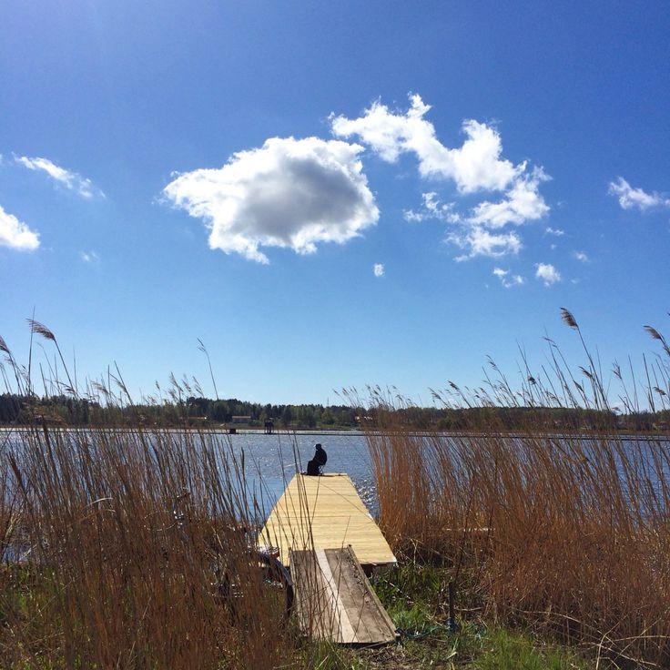 Gone fishing | #nyköping #sweden