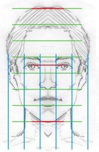 Face proportionDiagram