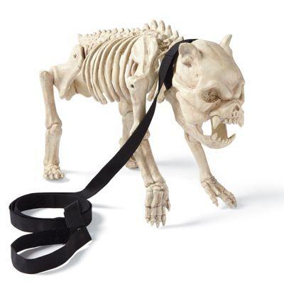 grandin road skeleton dog on leash halloween decorations and decor