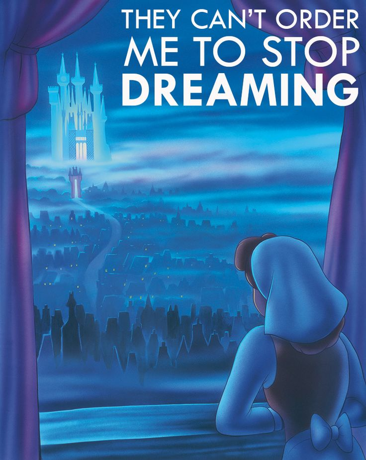 Don't Stop Dreaming!! ~ Cinderella