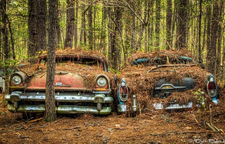 """sixpenceee:  The World's Largest Classic Car Junkyard If you drive 50 miles north of Atlanta, in the U.S. state of Georgia, along Interstate-75 and then turn right for U.S. Route 411 towards Chatsworth White, you will arrive at a patch of forest with acres upon acres of old rusting cars. A sign in the front reads """"The world's oldest junkyard jungle, here 80 years."""" Old Car City contains over 4,000 classic cars from the mid century — most of them from year 1972 or older — strewn over 34…"""
