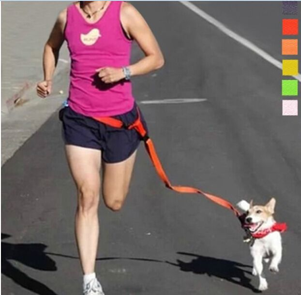 Running Dog Leash Hands Free Great for Walking, Running, Biking and Jogging 6 colors dog lead suitable for dogs weight >2.5kg