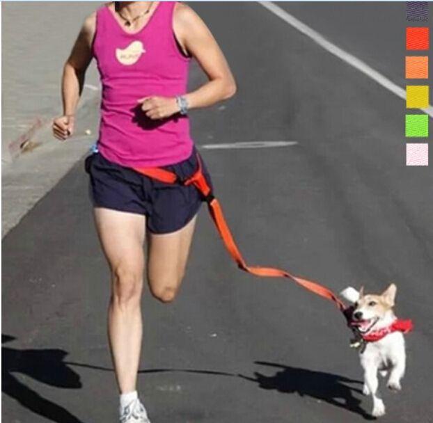Бегущей Собаки Поводок Hands Free Отлично Подходит для Прогулок, бег, езда на велосипеде и Бег Трусцой 6 цвета собака ведущий подходит для собак вес> 2.5 кг