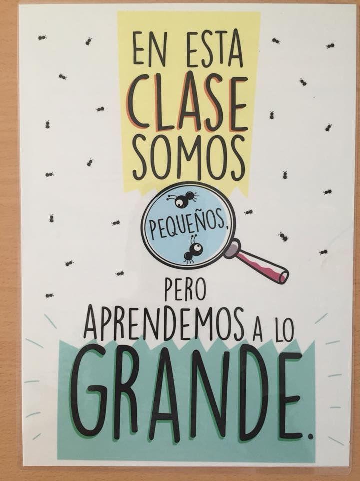 Imprimir Frases De Educacion Frases Para Maestros Y
