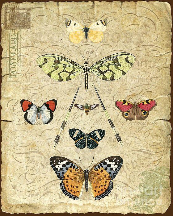 Butterflies In Art | Art History Butterfly Art | Famous ...