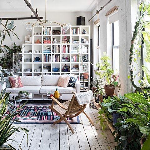 Oltre 1000 idee su piante in soggiorno su pinterest for Angolo del louis