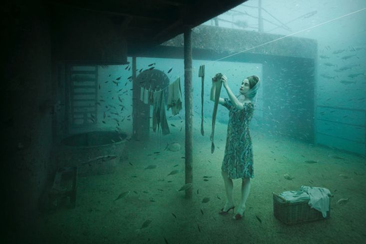 andreas franke - underwater photography exhibition