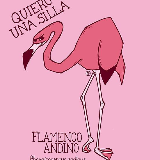 Andean Flamingo by AleFlavia