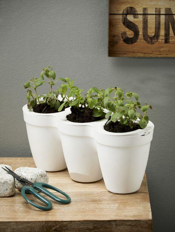 Cultiva y cosecha en tu balcón hierbas aromáticas para sazonar tus comidas. Si crees que son parte de tu jardín perfecto, inclúyelos en tu board.     #MiJardinPerfecto #Primavera  #Deco #Terraza # #Hogar #easychile #easytienda #easy #Concurso #Jardín #Huerto #Orgánico