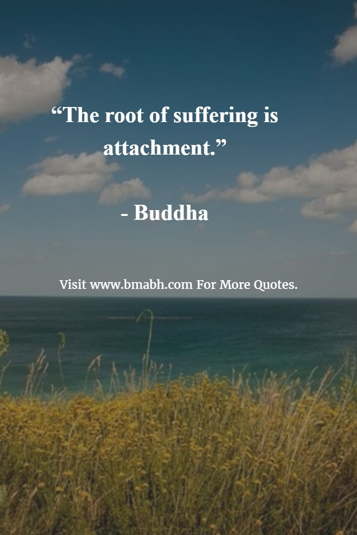 Buddhist Quotes On Death 436 Best Buddha &.images On Pinterest  Buddhism