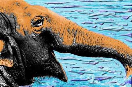 Elephant in Water by artist Rico Ovadia is available for sale printed on canvas.