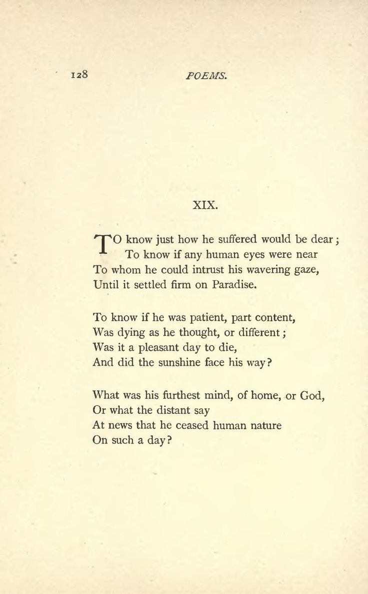 the poetry of emily dickinson essay
