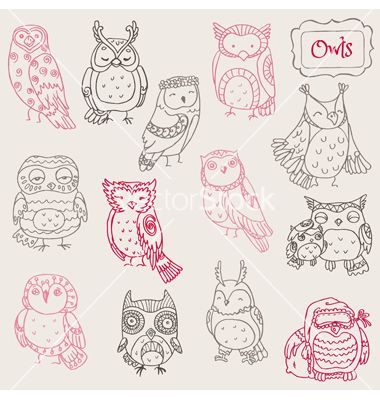 Various owl doodle collection vector on VectorStock®