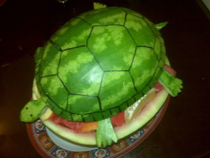 Turtle watermelon carving design my fruit