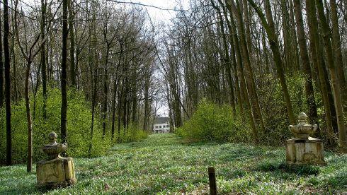 Beheervisie landgoederen Oud-Amelisweerd, Nieuw-Amelisweerd en Rhijnauwen | Tuinhistorisch Genootschap Cascade