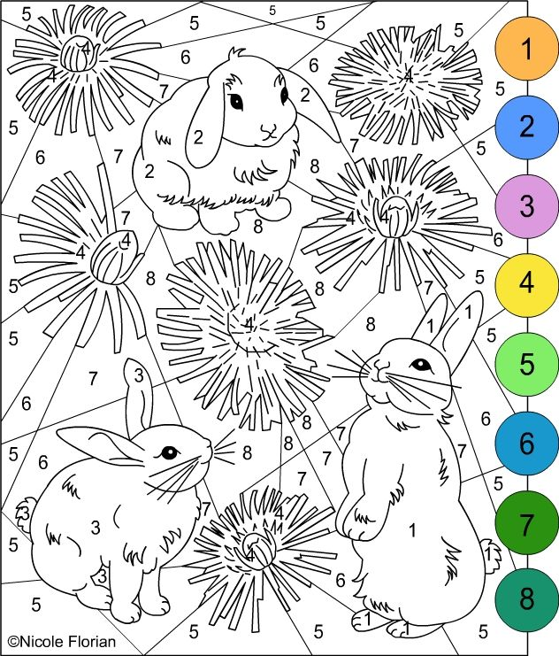 bunnies color by number adult coloring pages