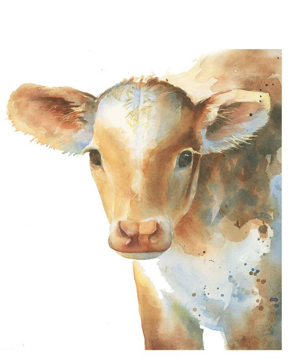 Farm animal nursery print of a little baby cow, makes a great gift for a baby shower. Watercolor calf painting by Katrina Pete