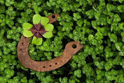 ¿La buena suerte existe? En esto de la buena o la mala suerte no hay rituales mágicos, quizás dependa de nosotros mismos más de lo que creemos...