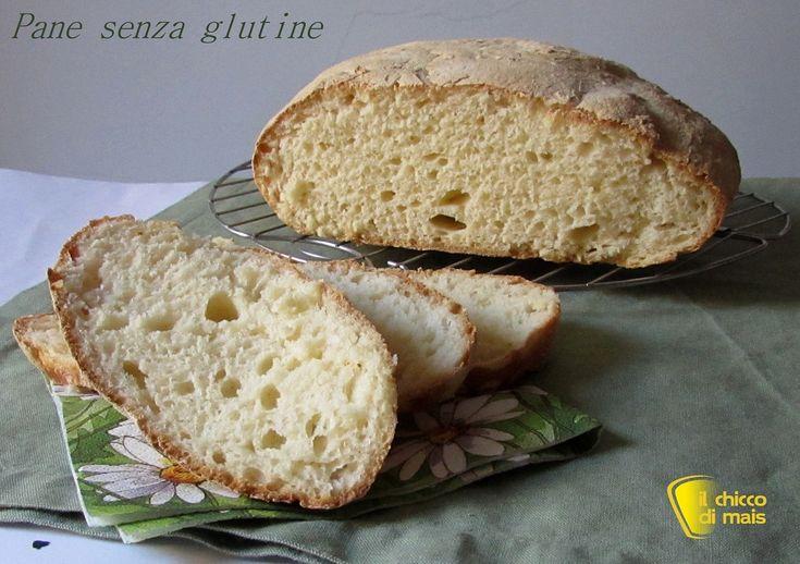 Pane senza glutine con folding nella ciotola il chicco di mais