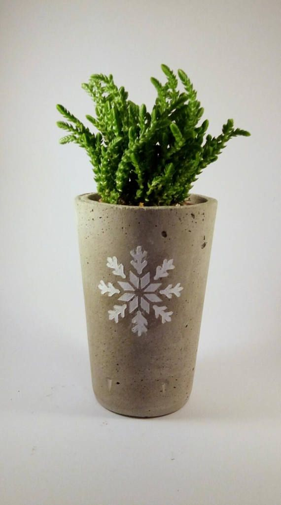 Handmade rounded concrete pot for an industrial Christmas