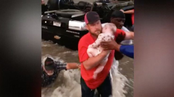 When the GoodSamaritans arrived, an infant and a toddler were nearly dead. That's when these strangers jumped into action.