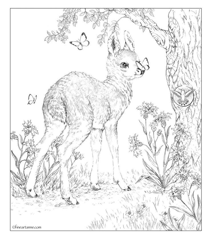 Free for You! Here are some Coloring Pictures for you. You have my permission to use these pictures in this Coloring Picture page for royalty free. But please don't sell these original colori…