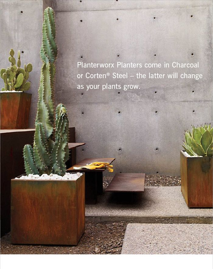 Planterworx Planters come in Charcoal or Corten® Steel – the latter will change as your plants grow.