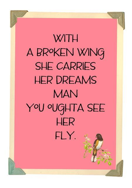 You outta see her fly...song lyrics, song quotes, songs, music lyrics, music quotes