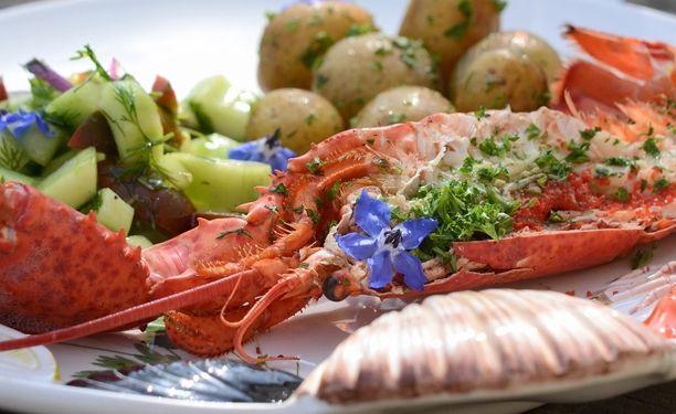 Grillet hummer Skøn opskrift med delikate hummere og agurke-tomatsalat med masser af dild