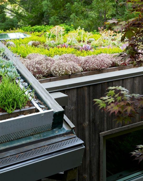 Grundach Ideen Umweltfreundliche Garten Der Zukunft In 2020 Flachdach Begrunung Gartengebaude Dachgarten
