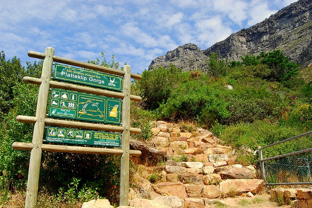 Cape town - start of Platteklip Gorge hiking trail, via Flickr.