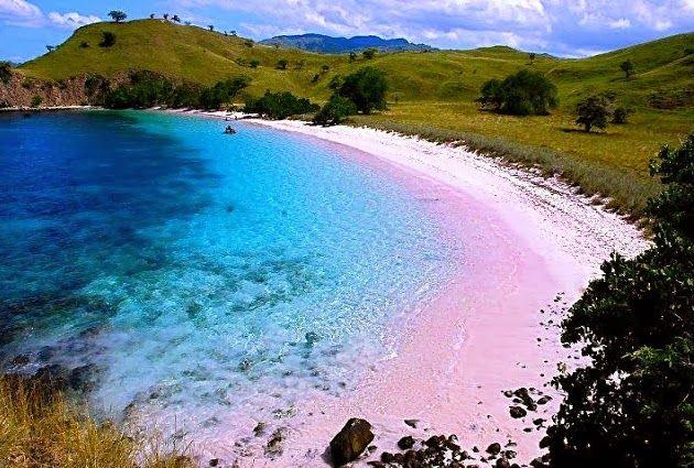 Tempat Wisata Di Indonesia dan Belahan Dunia Lain: Keelokan Si Merah Muda Lombok Timur - Pantai Pink