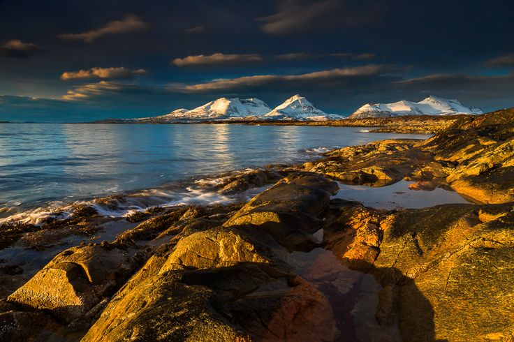 GoldShore by Anders Hanssen on 500px