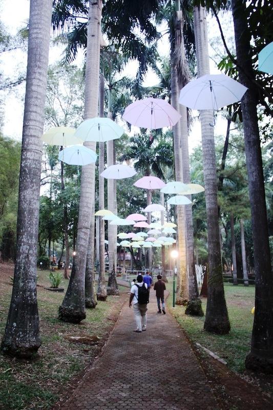 Taman Langsat, Barito.
