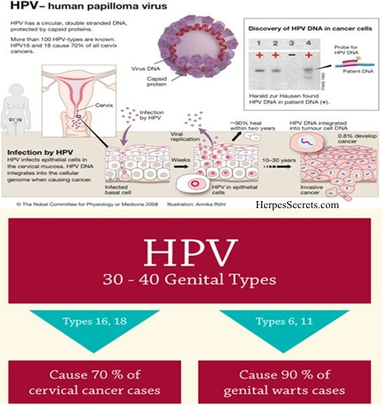 Dating sites for hpv