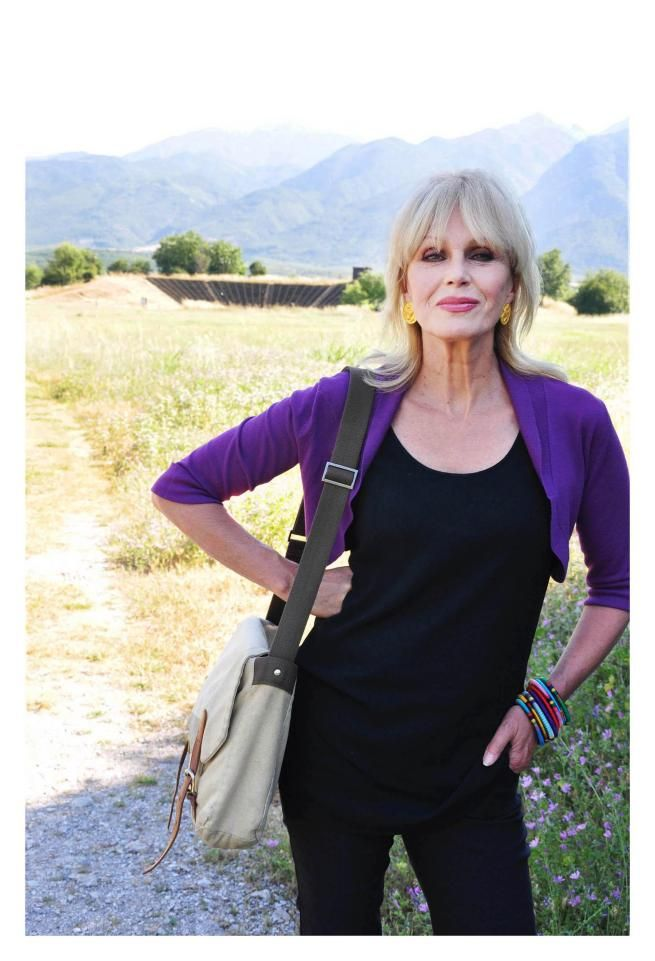 Image result for joanna lumley