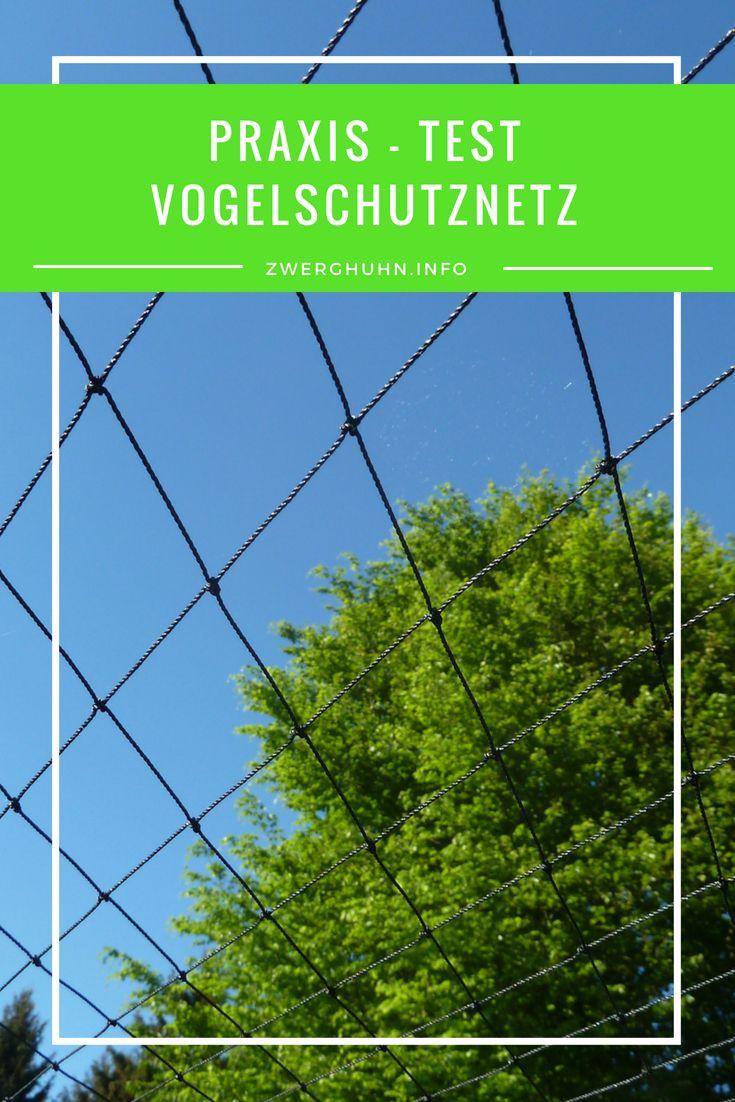 Vogelschutznetz Volierennetz Zwerghuhner Huhnerauslauf Huhner Im Garten