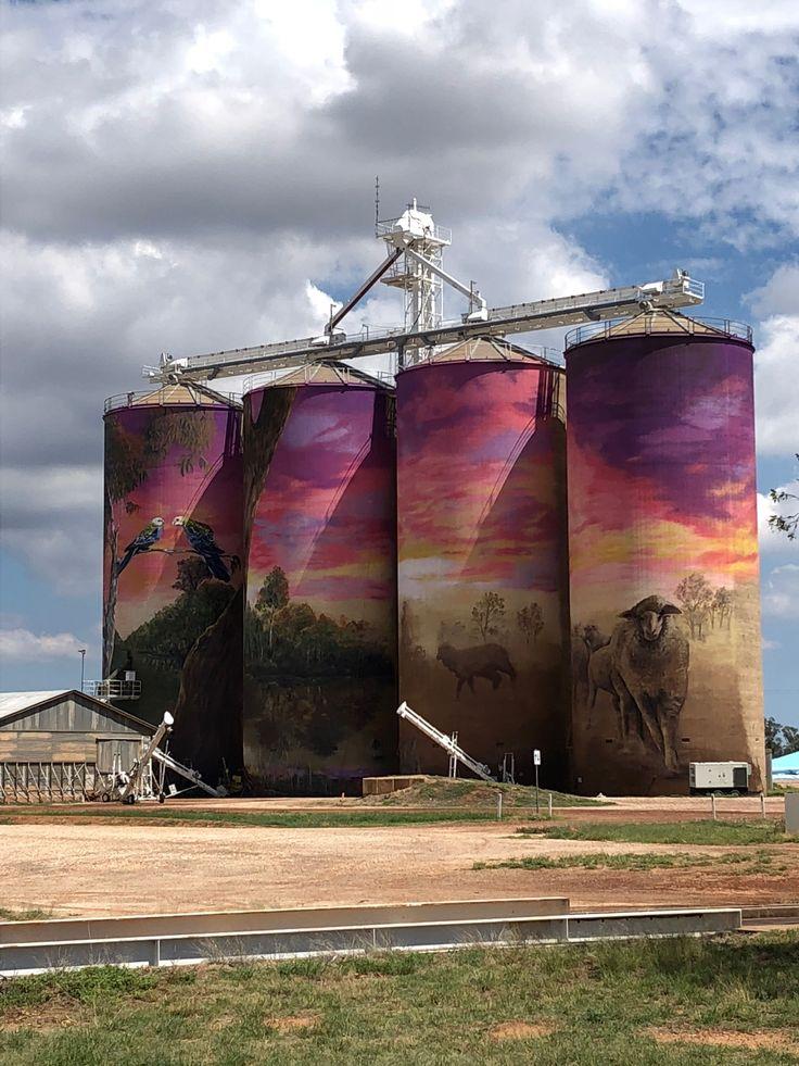 Silo art at Thallon QLD. #siloart #outbackqld #SeeAustralia