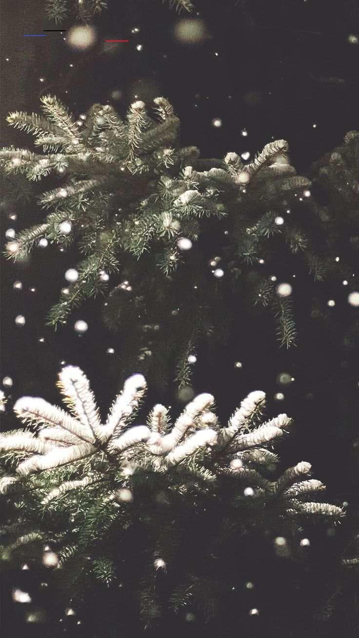 21 Merry Preppy Christmas Iphone Wallpapers Preppy Wallpapers Winterwallpaper More Preppy Christ En 2020 Noel Tumblr Fond Ecran Noel Fond D Ecran Telephone Noel