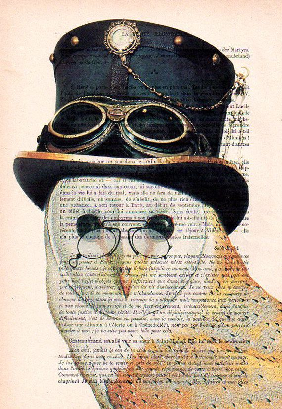Steampunk Owl: Art Poster Digital Art Original Illustration Giclee Print Wall art Wall Hanging Wall Decor Animal Painting