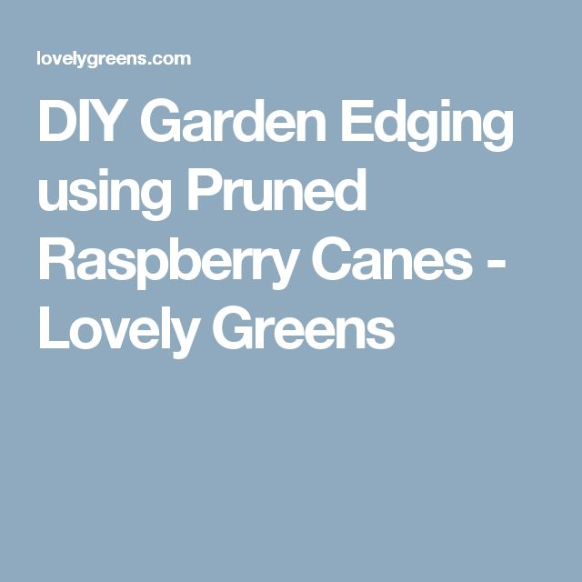 DIY Garden Edging using Pruned Raspberry Canes - Lovely Greens