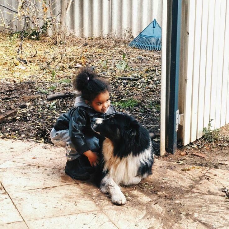 Australian Shepherd. Beautiful, sweet dog.