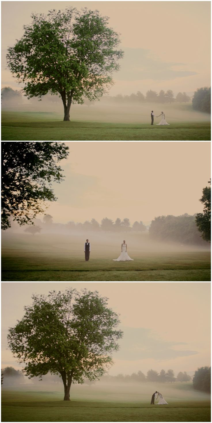 jane austens pride and prejudice escaping the fog Pride, prejudice and the mutation of  especially for those of us whose personal and community histories are caught up in the blanketing fog of cultural amnesia  jane austen pride and.
