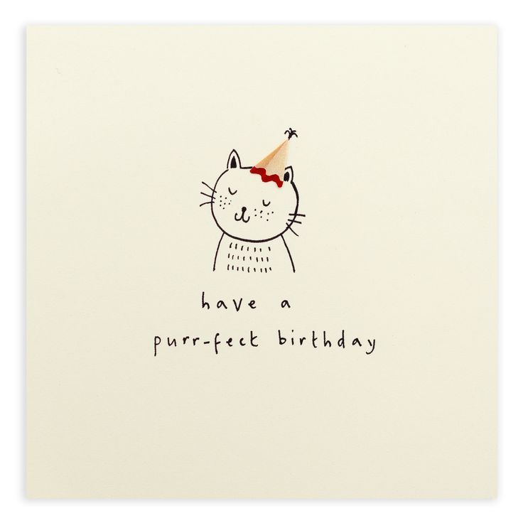 Friendly feline wishes for a lovely birthday