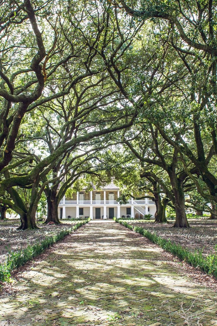 Culturally rich and historically complex, New Orleans often feels like its own museum. Unintentional exhibits are found in stumbled-upon courtyards, time-capsule bars, famous old restaurants and restored homes. The city's actual museums also go a long way toward preserving and celebrating its culture and history, too, and are staffed with people who love sharing fascinating facts (and artifacts).