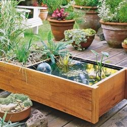How to build your own deck top pond! Lovely way to add some nature to a bland back deck.