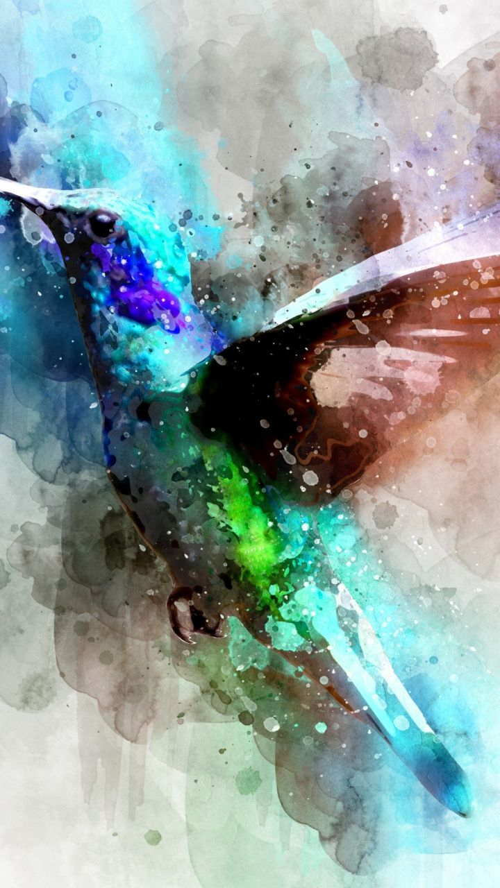 Bird Hummingbird Digital Art 720x1280 Wallpaper Digital Art Hummingbird Art Art
